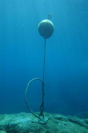 bouée de sub-surface