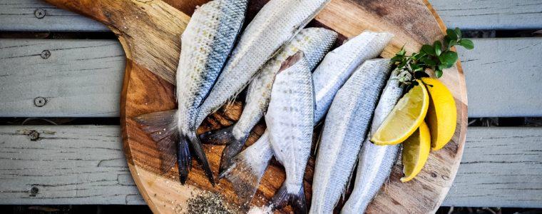 poissons décembre